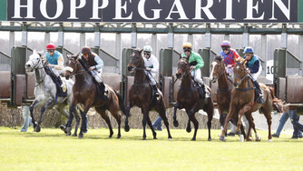 Start in Berlin Hoppegarten