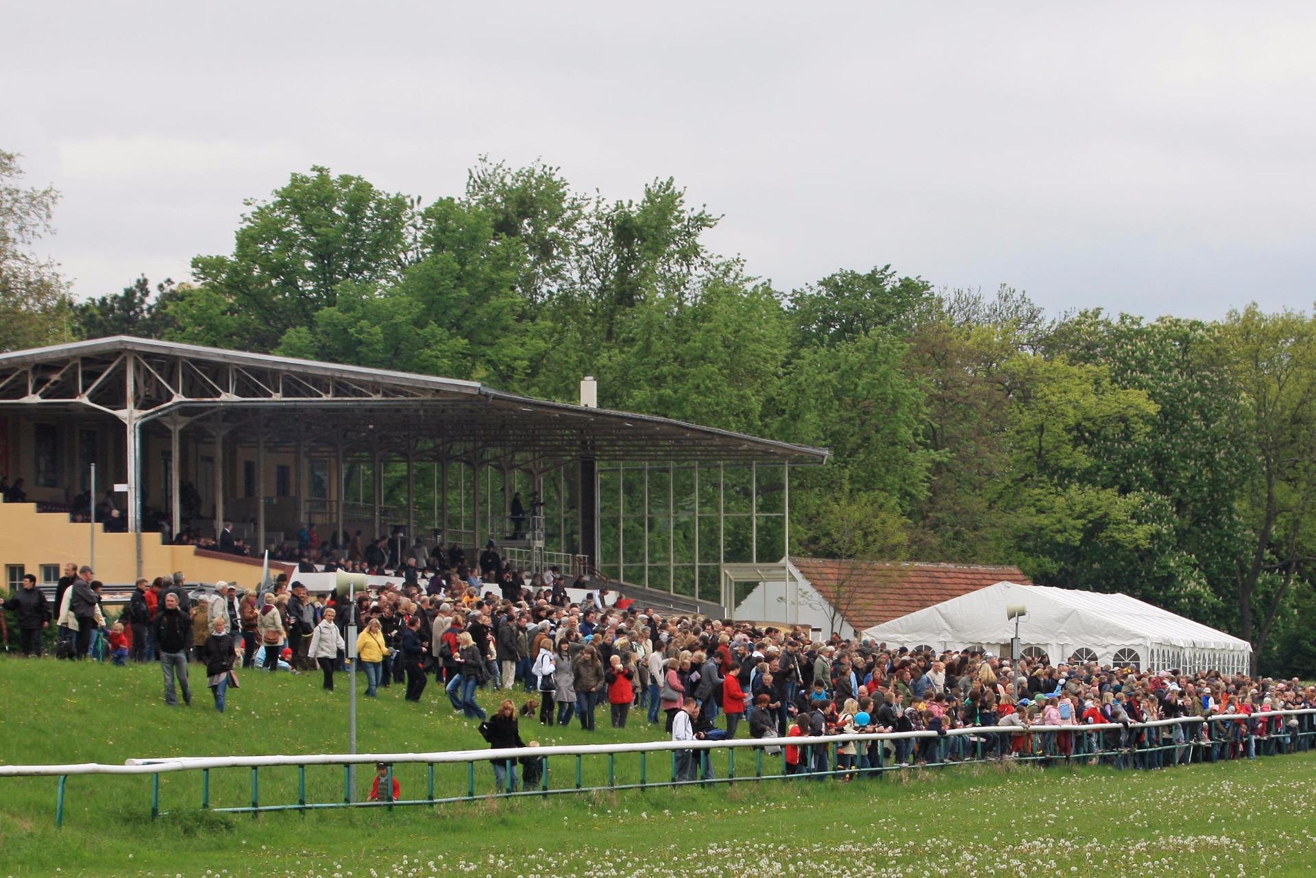 Pferderennen Magdeburg