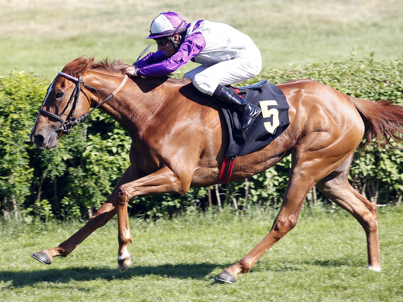 Nightflower beim Sieg im Diana-Trial in Hoppegarten 2015