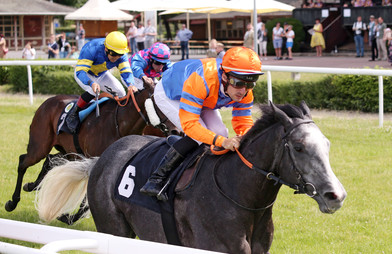 Moonlight Man imponiert im Dresden-Highlight & Championjockey in Mega-Form