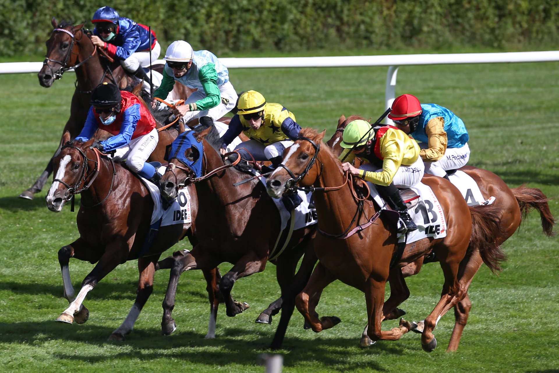 Galopp Derby Hamburg 2021