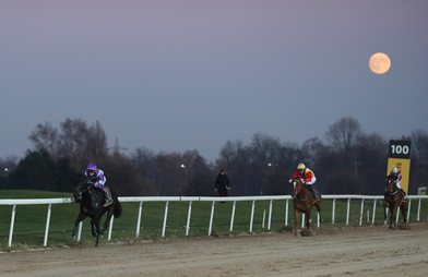 Kingdom of Heaven überrascht die Favoriten