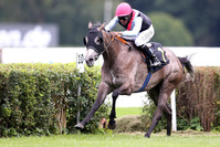 Wild Illusion und A Raving Beauty im Breeders' Cup Filly & Mares Turf  platziert